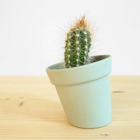 Small distorted #flowerpot for the lovely #cactus #ceramics #press #studiolorier #emeraldgreen