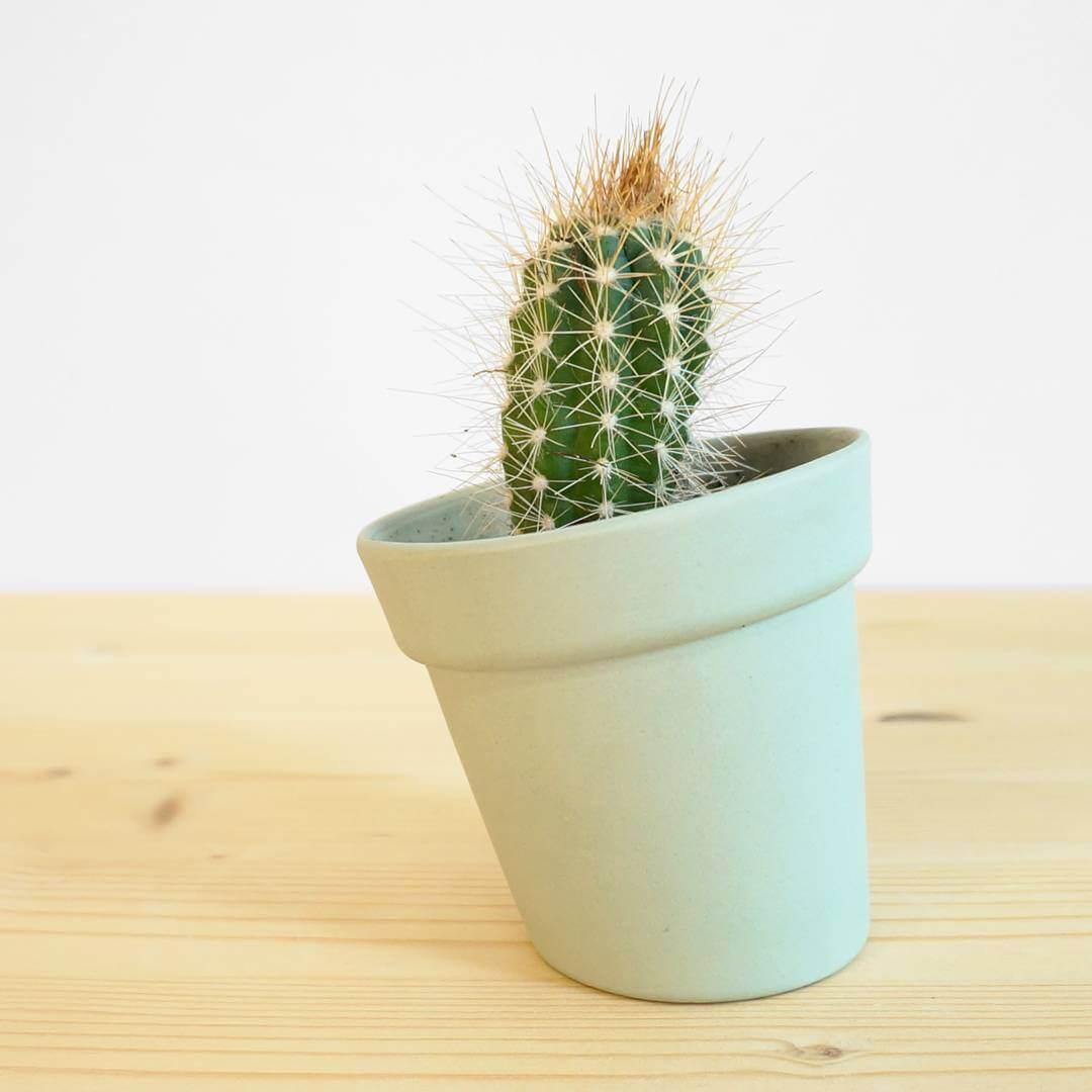 Small distorted #flowerpot for the lovely #cactus #ceramics #press #studiolorier #emeraldgreen