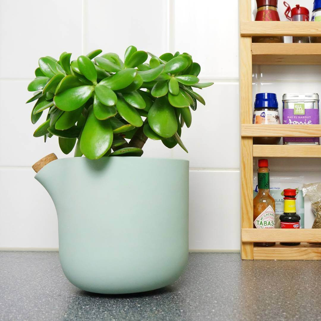 Difficulties to keep your plant alive? Tomorrow we will launch a crowdfunding campaign and unveil a clever mechanism in this flowerpot that nurtures the plant for you