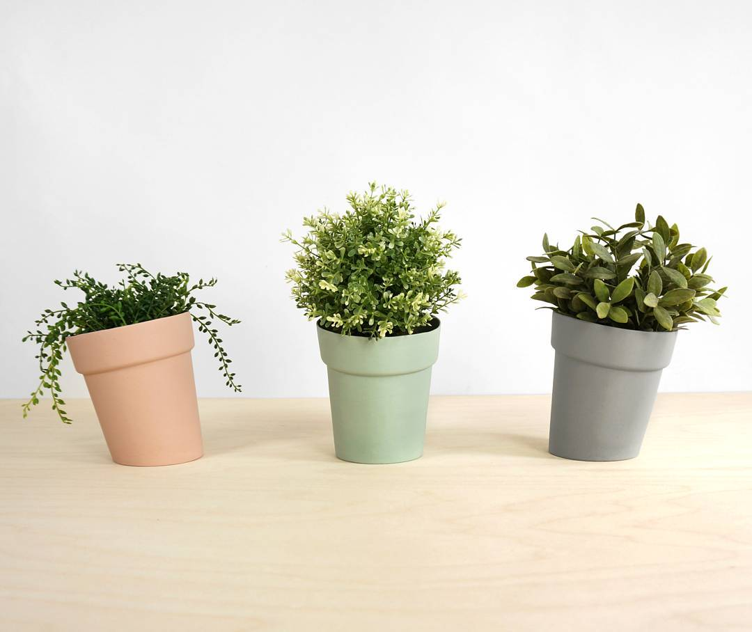 Keep your plants in the distorted flowerpots, available in 3 colors