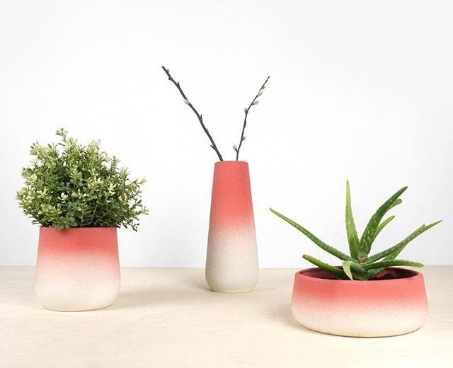 Flowerpots and vase in