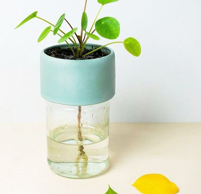 This year we wanted to make more sustainable products: a flowerpot extension that uses a regular jar as water reservoir. Water up to two months #2019