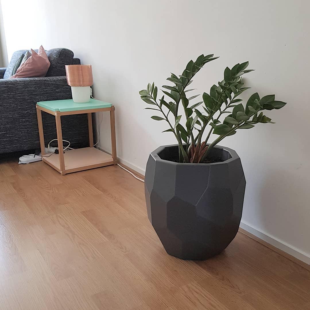 Poligon flowerpot at home