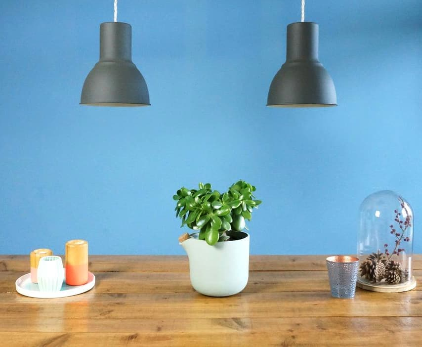 Self watering flowerpot: Natural Balance, successfully Kickstarted 3 years ago and still one of the most popular products