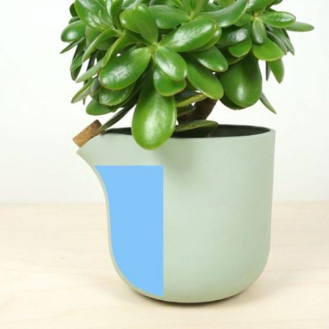 🌱In need for a self watering flowerpot? Get it now in our shop #2016